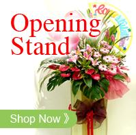 Opening Flowers/Scrolls锦旗