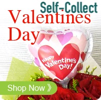 VDay Self Collection