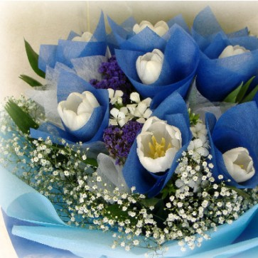HB12520-LHKW-16 Wh Tulip hand bouquet