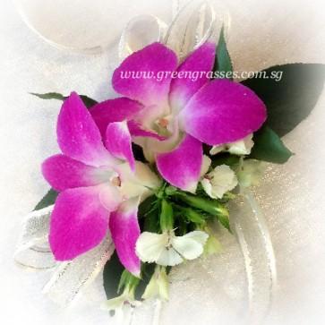 CGW01802-Wrist Corsage-2 Bon Orchids
