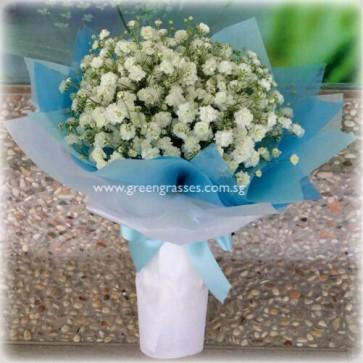 HB04018-SW-Wh BB Baby's Breath hand bouquet