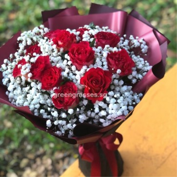 HB08510-ORW-12 Red Rose