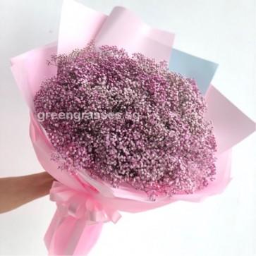HB10055-Pk Baby's Breath BB Hand Bouquet