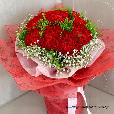 hb07516 llgrw 12 red carnations hand bouquet