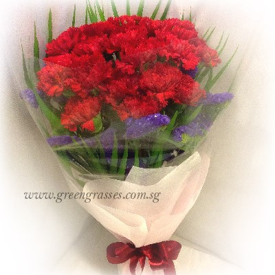 hb08109 tw 20 red carnation hand bouquet
