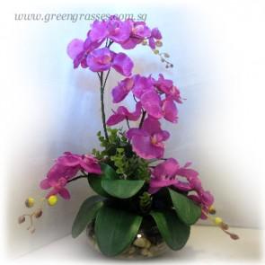 AF07202-Artificial Orchids Arrangement