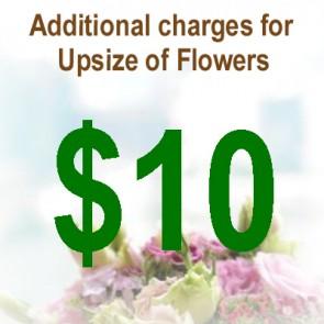 AU01008-$10 Upsize Charge