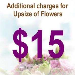 AU01511-$15 Upsize Charge