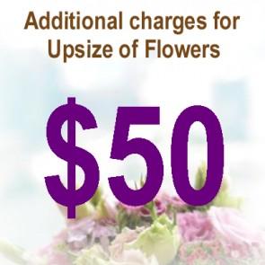 AU05038-$50 Upsize Charge