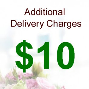 AD01006-$10 Delivery Charge