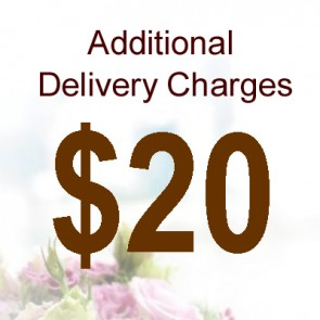 AD02012 Delivery Charge