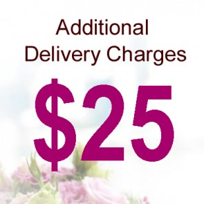 AD02518-$25 Delivery Charge