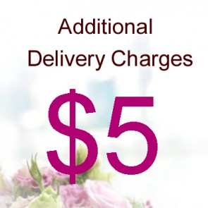 AD00503-$5 Delivery Charge