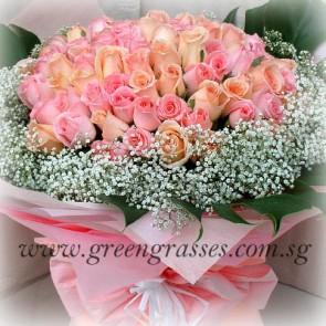 GHB26615-LGRW-100 Rose(Pk & Champagne)