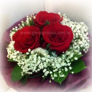 HB05047-LLGRW-3-Red Rose