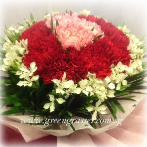 HB07563-LLGRW-12 Red & Pk Carnation hand bouquet