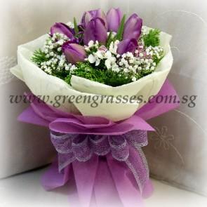 HB09048-LLGRW-10 Purple Tulip