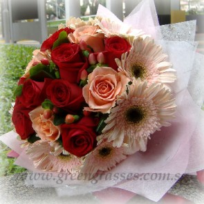 HB10646D-LGRW-12 Rose(Red & Champagne)+10 Pk/Ph Gerbera