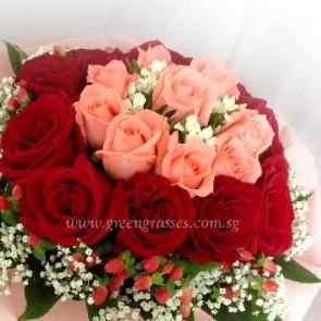 HB10209-LLGRW-21 Rose(Red & Pk)