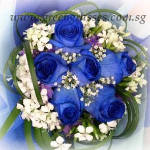 HB10521-ORW-6 Ecuador Blue Rose