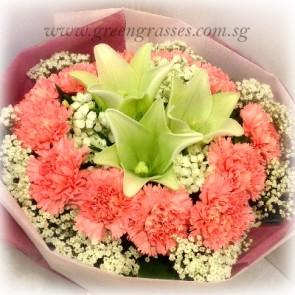 HB10527-LGRW-3 Lily+12 Pk carnation