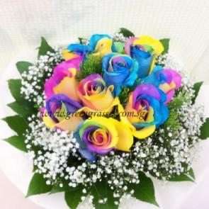 HB12513-LGRW-10 Ecuador Rainbow Rose