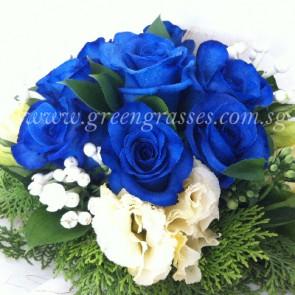 HB13022-LLGRW-10 Ecuador Blue Rose