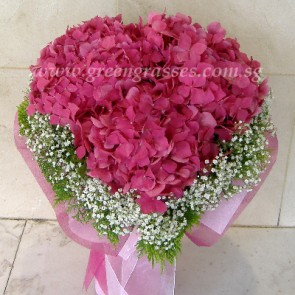 HSB13905-Heart-Shaped Hydrangea
