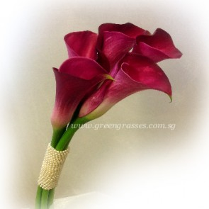 WB09026 ROM-5 Burgundy Calla Lily w/Bead hand bouquet