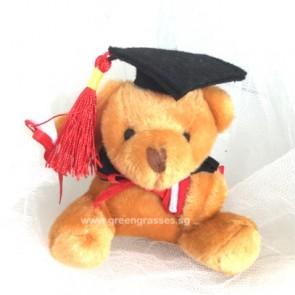 """AB004906-3"""" Dk Brown Graduate Bear"""