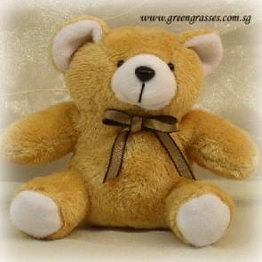 "AB00494-4"" Brown Mint Bear"