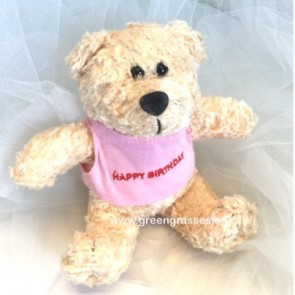 "AB007907-5.5"" Beige Birthday Bear"