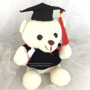 "AB011903-6"" Wh Graduation Bear"