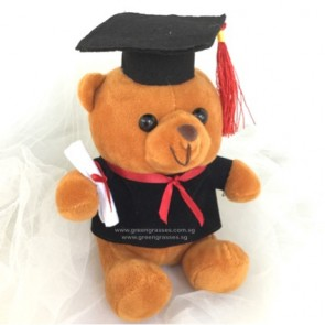 "AB011904-6"" Brown Graduation Bear"