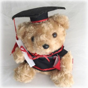 "AB01516-7.5"" Brown Graduate Bear"