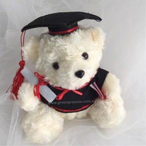 "AB01517-7.5"" Wh Graduation Bear"