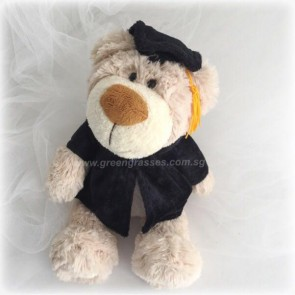 "AB01524-9"" Brown Graduate Bear"