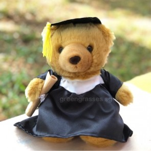 "AB0199016-8"" Sitting Graduate She-Bear"