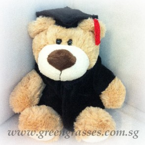"AB01997-9"" Brown Graduation Bear"