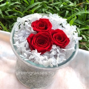 BXP08014-3 Red Roses Everlasting Preserved 永生花 in Glass Vase