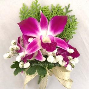 CG01213-Buttonhole Corsage-3 Bon Orchids w/BB