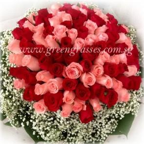 GHB28018-LGRW-99 Red & Pk Rose