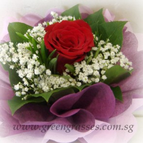 HB03032-LGRW-1 Red Rose Hand Bouquet