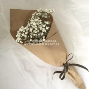 HB03507-KW-Wh BB-Baby's Breath hand bouquet