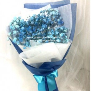 HB04010-SW-BB-Blue Baby's Breath hand bouquet