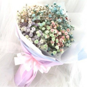 HB04011-SW-BB-Rainbow Baby's Breath hand bouquet