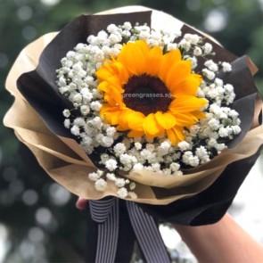 HB045922-SW-1 Sunflower