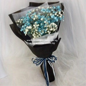 HB05028-KW-BB-Blue/Wh Baby's Breath hand bouquet