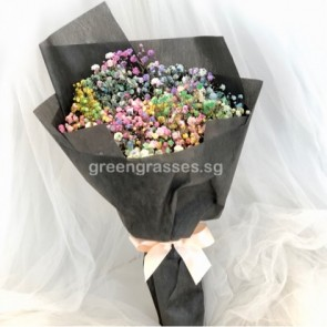 HB05066-Rainbow BB Baby's Breath 彩虹满天星