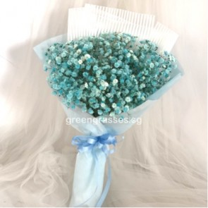HB05574-Blue BB Baby's Breath